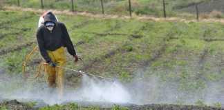 Uso de agroquímicos en fincas
