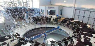 Las entidades agropecuarias piden créditos blandos y mejor precio para salvar la industria láctea.