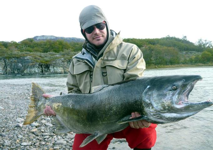 salmón Chinook
