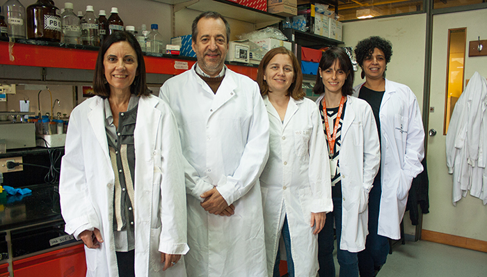 La imagen tiene un atributo ALT vacío; su nombre de archivo es Foto-1-cyt-TITULAR-Investigadores-paper-Esclerosis-Multiple.jpg