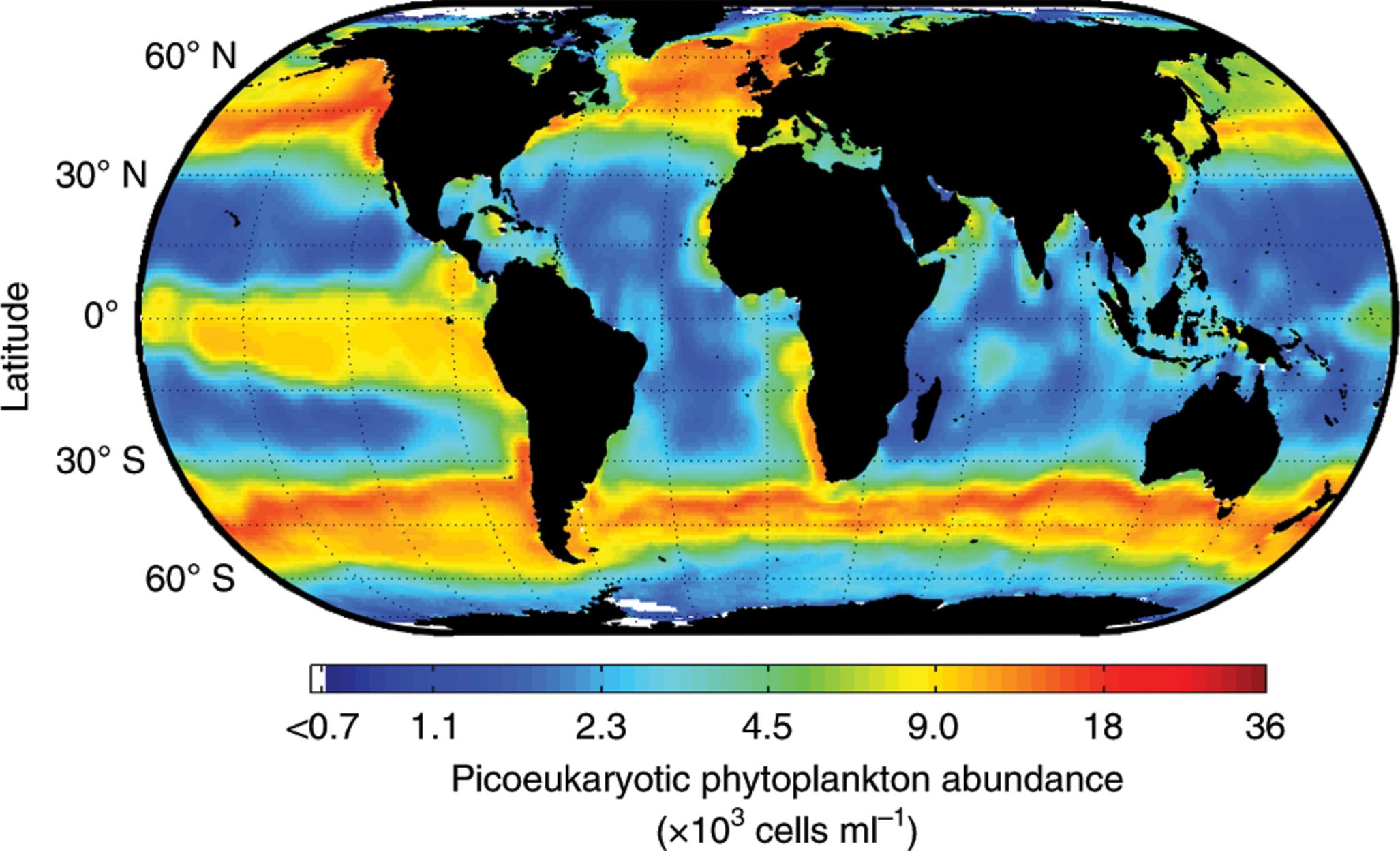 Equipo internacional y del Conicet estudian y mapean fitoplancton marino responsable del 10% del oxígeno terrrestre